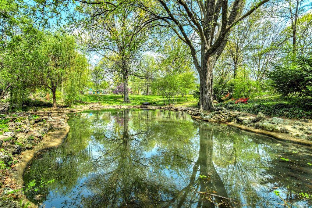 pool-of-self-reflection